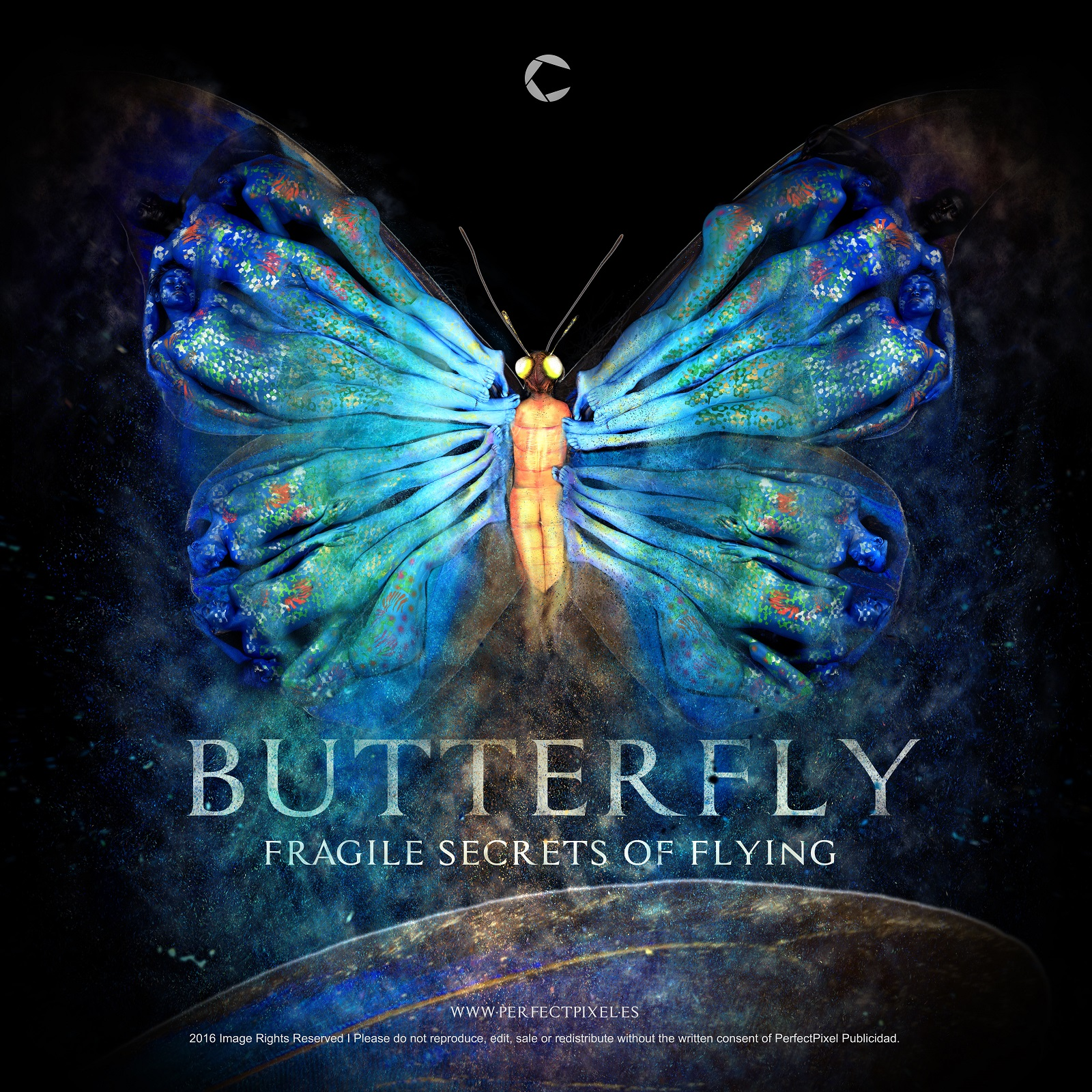 https://www.perfectpixel.es/wp-content/uploads/2016/01/Butterfly-Fragile-Secrets-of-FLying-by-PerfectPixel-Box-final-LR.jpg